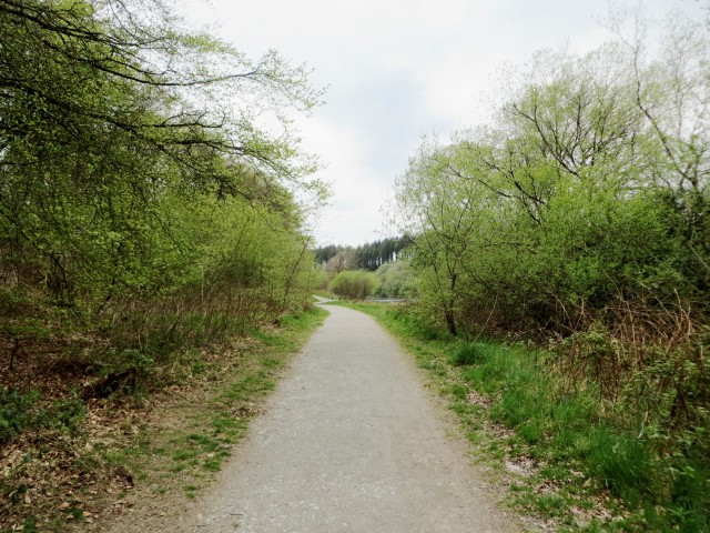 Footpath on a walk around Wistlandpound