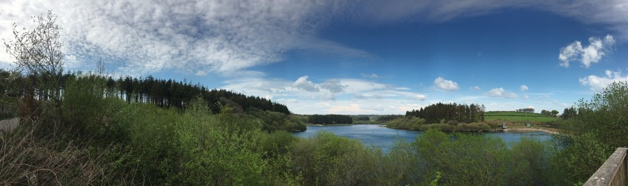 Panorama of Wistlandpound Reservoir