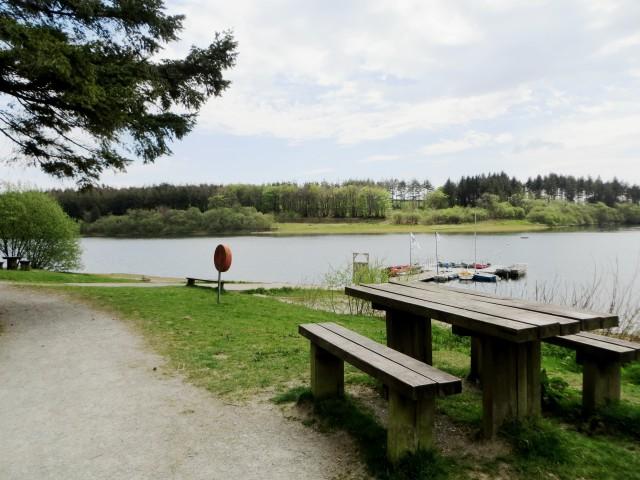 Picnic benches at Wistlandpound