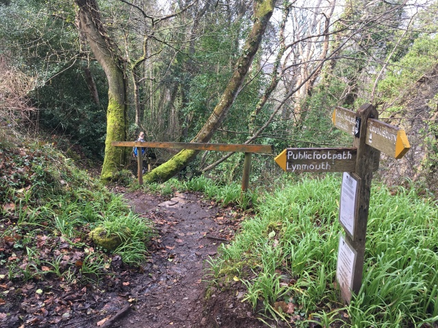 Path down into Lynton