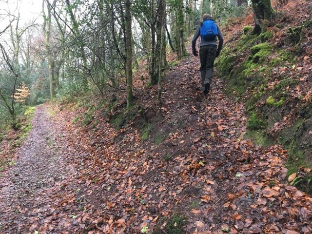 Path up to Trentishoe Down