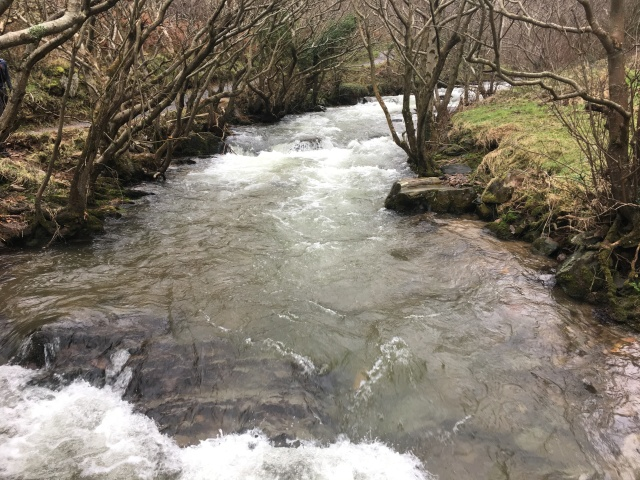 Standing on a bridge over the River Heddon