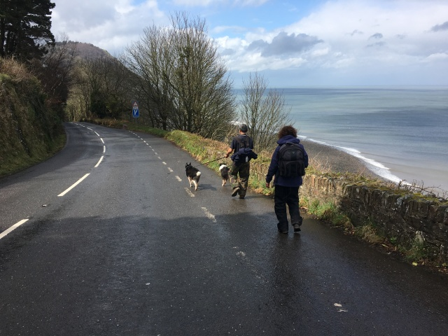 Road on the way to Lynton