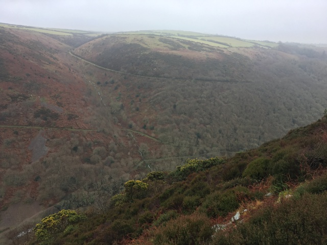 Above Heddon Valley