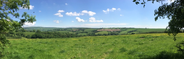 Stunning countryside on North Molton South Molton walk