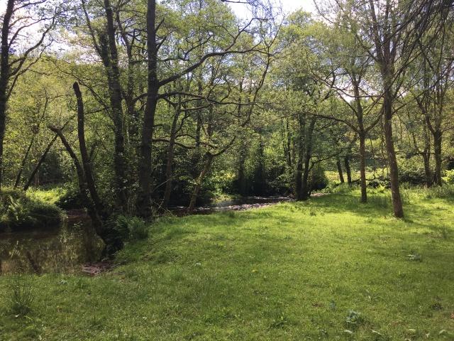 Good picnic spot by the River Mole