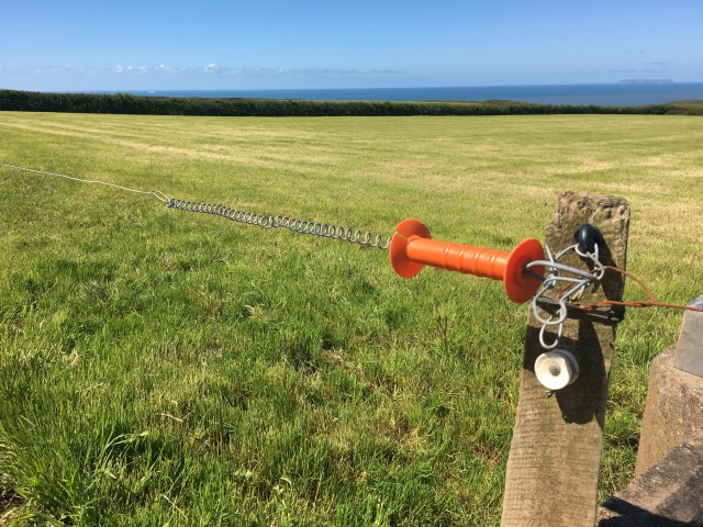 Electric fence on Hartland walk